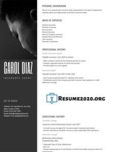 resume samples 2020