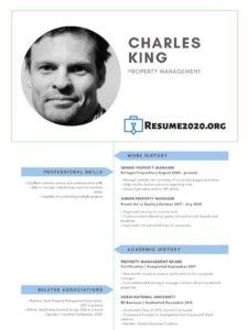 CV example 2020