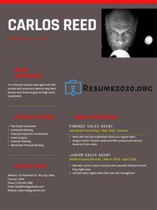 2020 resume example
