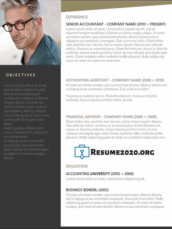 latest resume templates in 2020