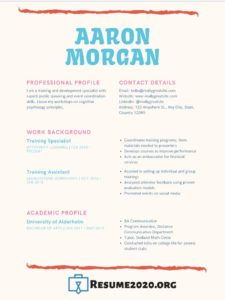 resume 2020 template