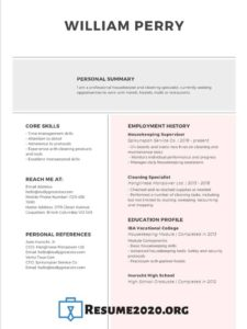 resume examples 2020