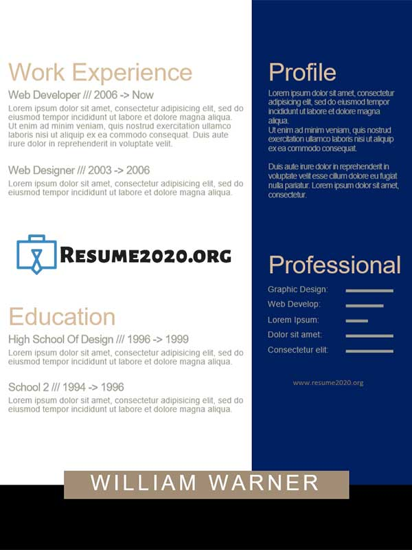 2020 resume chronological template