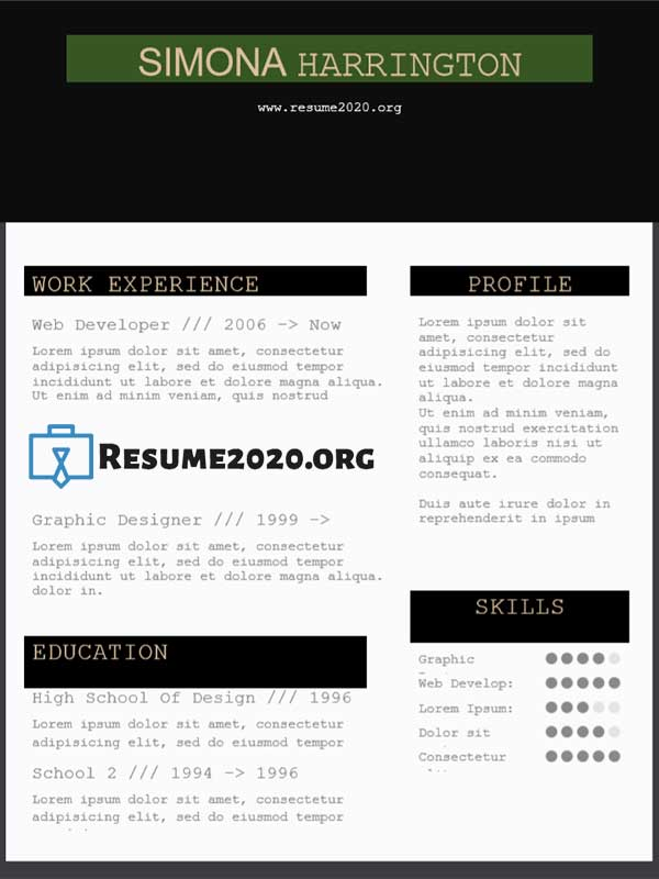 Chronological resume 2020 sample