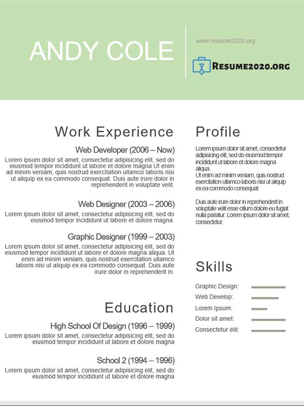 creative resume 2020 example